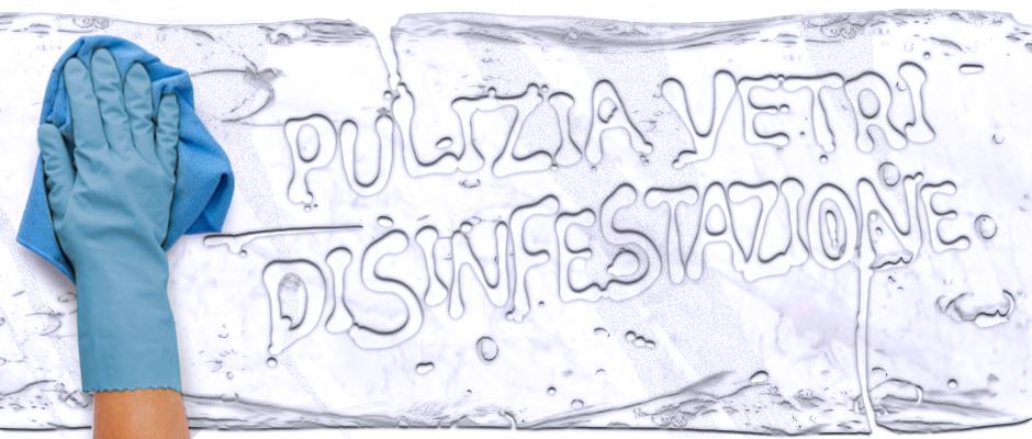 Pulizia Vetri e Disinfestazioni